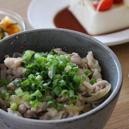 mizuhoさん絶品豚丼